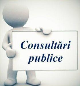 ANUNŢ  privind demararea consultărilor publice pe marginea proiectelor de decizii ale consiliului raional Şoldăneşti propuse spre examinare în şedinţa ordinară din 7 decembrie 2017
