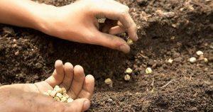 Agricultorii au dat start lucrărilor agricole de primăvară!