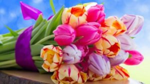 Felicitare cu prilejul Zilei Internaţionale a Femeii – 8 martie