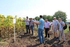 """Atelier de lucru cu tema: """"Fertilizarea cu Fosfor a culturilor de câmp în parametrii Agriculturii Ecologice"""""""