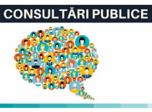 Anunţ privind demararea consultărilor publice pe marginea proiectelor de decizii propuse spre examinare în şedinţa ordinară din 24.08.2021