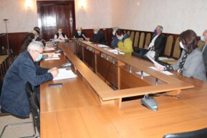 Comisiile consultative de specialitate au examinat proiectele de decizii propuse spre examinare în ședința ordinară din 15 aprilie 2021