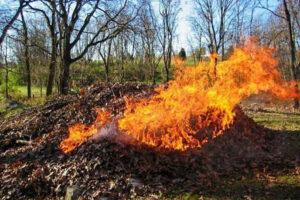 Atenţie la arderea resturilor vegetale !