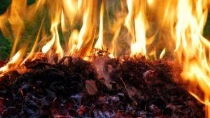Arderea resturilor vegetale – prejudiciu major pentru mediu.